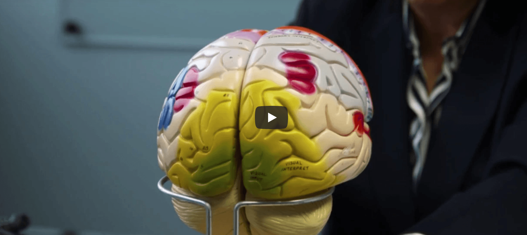 How does trauma change the brain?