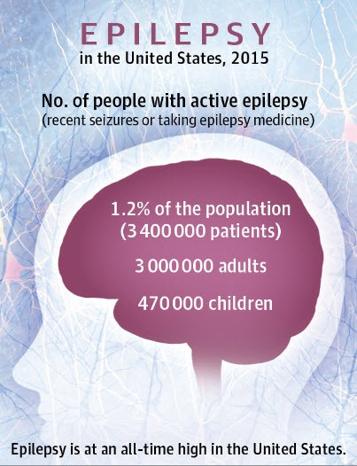 The Essentials Of Epilepsy And Seizure Disorders An In Depth Guide